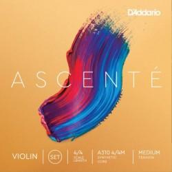 D`Addario Ascente Violin set