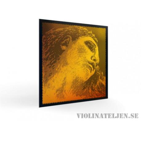 Pirastro Evah Pirazzi Gold cello set