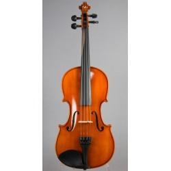 Violin Eastman 100