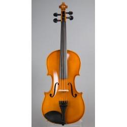 Violin Eastman 80
