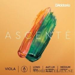 D`Addario Ascente Viola set