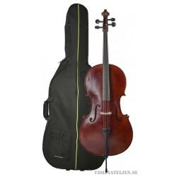 Celloset Gewa Aspirante Venetia