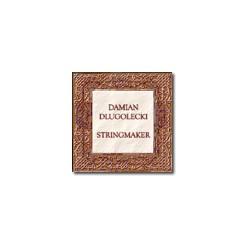 Dlugolecki Violin G Silver/Gut